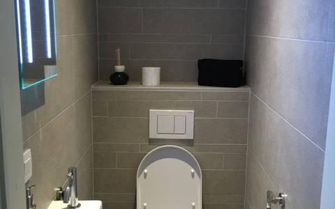 toilet angelo.jpg